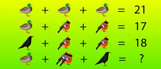 bird-math